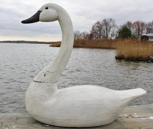 B620 Maryland full size white Swan, wooden hand carved, maker unknown, original paint, small age crack to the neck