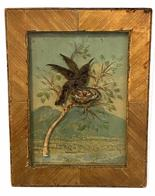 G43 Late 19th to early 20th century hummingbird diorama. In the background are mountains with a small town. The hummingbird is resting on a branch made of paper with green leaves painted on the glass. Underneath the bird is a small nest with two eggs resting inside. It is in the original frame with the front being decorated by individual reed strips laid at a 45 degree angle. Just a very rare form of workmanship. Measurements are 7 1/8� wide by 9 1/4� tall.