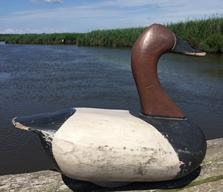 RM755 High Head canvasback drake carved  by Joe Racine