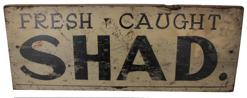"B53 Early Southern fish market trade sign ( Fresh caught Shad) circa 1930"" painted on board"