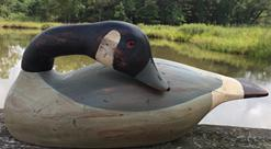 D402 Canada Goose carved by Richard Connelly  1988 well carved  with a removerable head that can be reposition into a slepper or  a hissing Goose