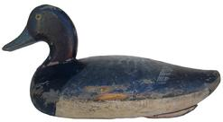 9 Early 1935 Blue Bill Decoy by Jessie Urie,Rock Hall Maryland in original paint