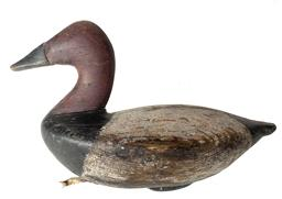 RM1098 Rare Charles Barnard (1876-1958) Canvasback Drake decoy from upper Chesapeake Bay. Notice boat hull like body. Original balance weight.