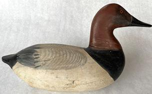 RM1238 Early upper Bay Canvasback drake  unknown carver circa 1900 decoy with iron keel