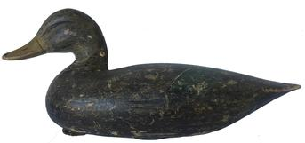 Gorgeous  Ira Hudson (1873-1949) Black Duck Decoy, Chincoteague Island, VA. Circa 1928 featured on page 63 in the book �Ira Hudson and Family Chincoteague Carvers� By Henry Stansbury.  Original paint, tack eyes, mandible carving just a outstanding example of Ira�s work!!