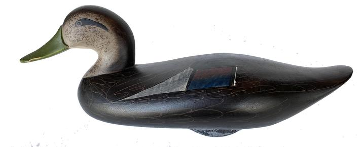 G157 Jim Pierce Black Duck Decoy, Havre de Grace, MD, painted eyes, solid body, mint original paint w/excellent detail, , signed in electro pen on bottom, makers brand JP